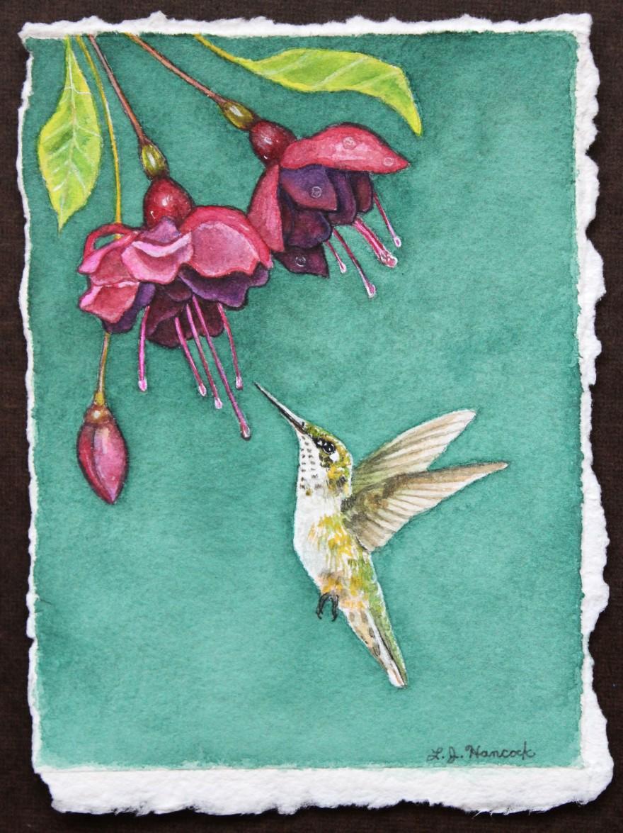 FemaleRubyHummingbird