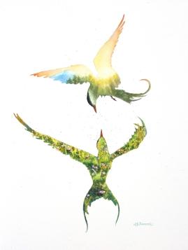 Arctic Terns info@marneestudio.com