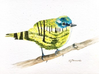 Cerulean Warbler $125 (Prints Available)