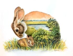 Marsh Rabbit SOLD
