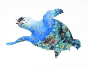 Sea Turtle Interior info@marneestudio.com