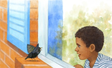 Blackbird & Boy