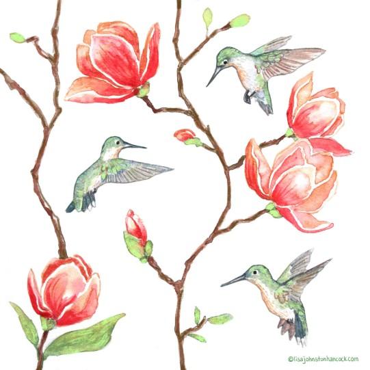 Japanese Magnolia & Hummingbird