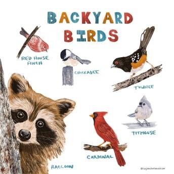 Backyard Birds?